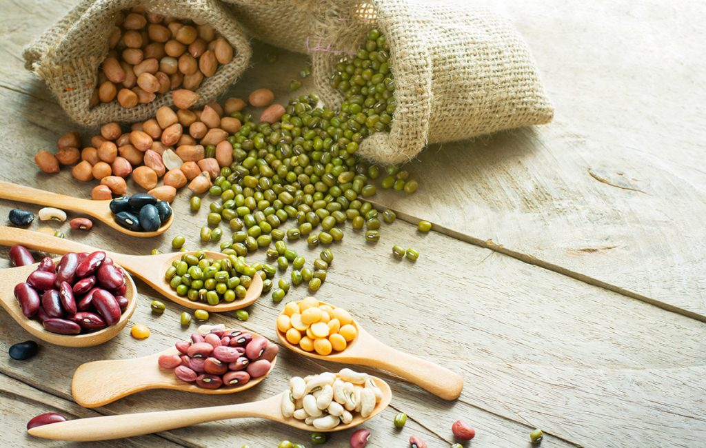 High-fibre foods: Legumes and Beans