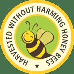 harvest honey bee
